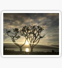 Corel Trees Sticker