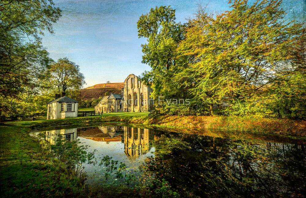 Cistercian Abbey by Adrian Evans