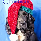 Merry Christmas Dog by JEZ22