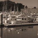 Bodega Marina by doubleheader