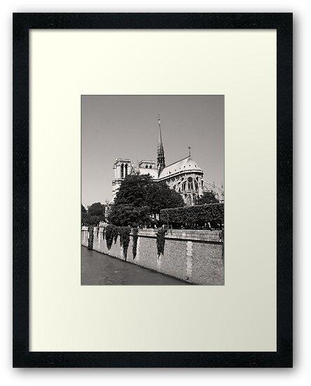 Notre Dame & The River Seine  by careball