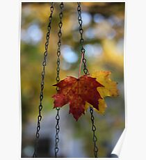 Leaves in Bird Feeder Chain Poster