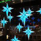 Stars by Bonnie Foehr