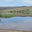 Lake Meadowbank, Tasmania by Margaret  Hyde