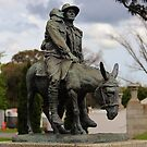Simpson at Gallipoli by brendanscully