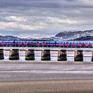 Arnside Viaduct by inkedsandra