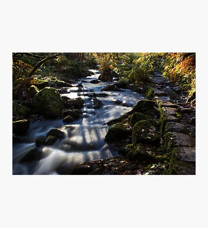 Autumn on Wyming Brook II Photographic Print