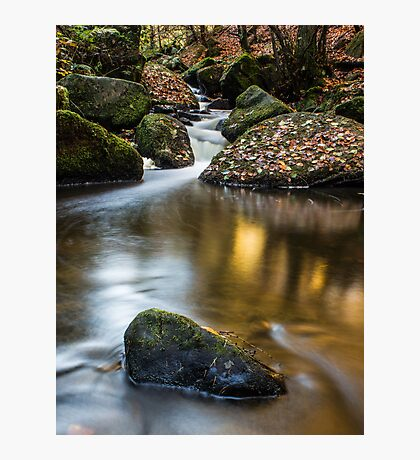 Autumn on Wyming Brook III Photographic Print