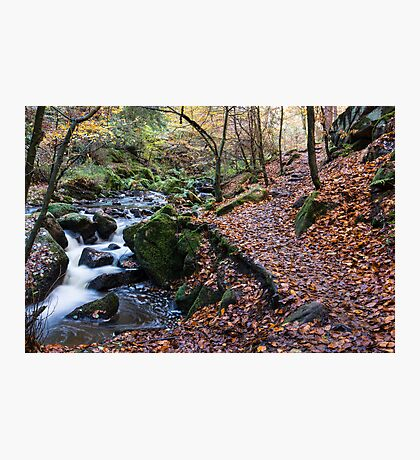 Autumn on Wyming Brook Trail Photographic Print