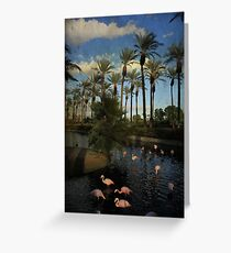 Savoring the Last Light Greeting Card