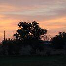 Idaho Sunrise by Annie Underwood