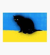Graffiti Kitty Photographic Print