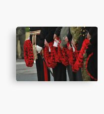poppies forever Canvas Print