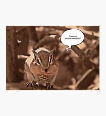 Begging Chipmunk Photographic Print