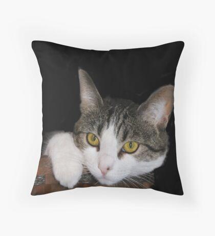 Sweet Sophia ll  Throw Pillow