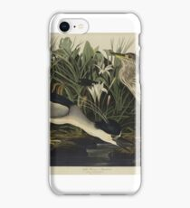 John James Audubon (Jean-Jacques Audubon) (1785 – 1851), NIGHT HERON OR QUA BIRD, FROM THE BIRDS OF AMERICA iPhone Case/Skin