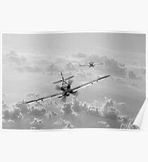 "RAAF Spitfire ""Infirmière grise"" Poster"