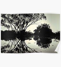 Sunrise billabong reflections (duotone) Poster