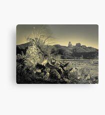 Warrumbungle landscape (duotone) Metal Print