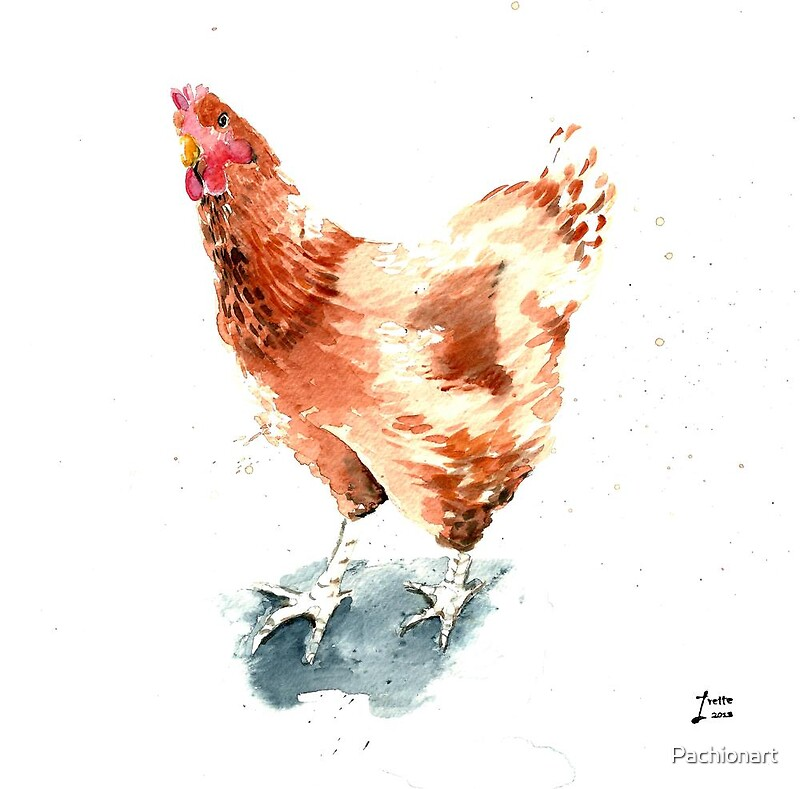 Watercolour of a Ginger Chicken\