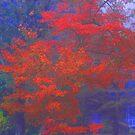 Foggy Autumn Dawn by OntheroadImage