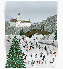 Ice skating pond Poster