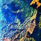 Waimea Canyon 17 Abstract Impressionism by pjwuebker