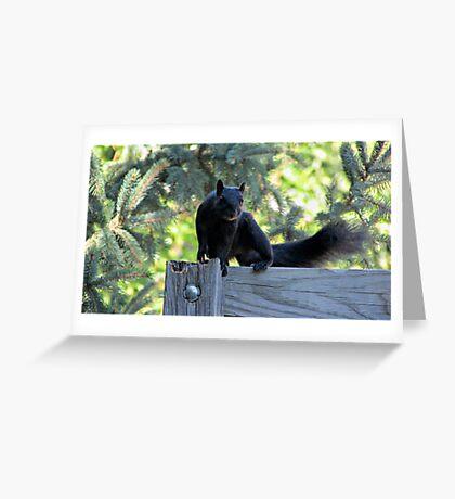 Black as Night Greeting Card