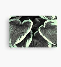 Leaves - 1 (duotone) Canvas Print