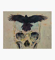 Black Crow Photographic Print