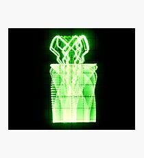Oscilloscope Flowers in Vase Photographic Print