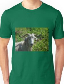 Portrait of A Horned Goat Grazing T-Shirt