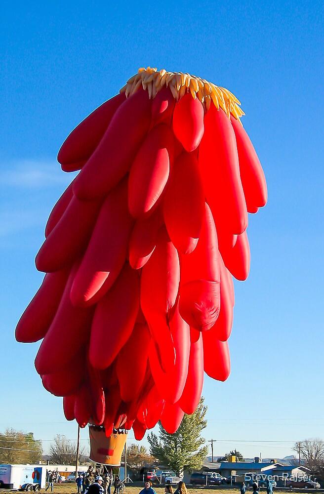 Chilli ristra hot air balloon by Steven Ralser