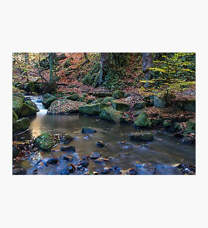 Autumn on Wyming Brook IV Photographic Print