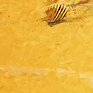 Striped Shell on the Beach Abstract Impressionism by pjwuebker
