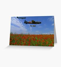 BBMF over the Poppy Field Greeting Card