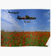 BBMF over the Poppy Field Poster