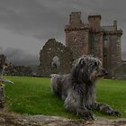 castle dugs by joak