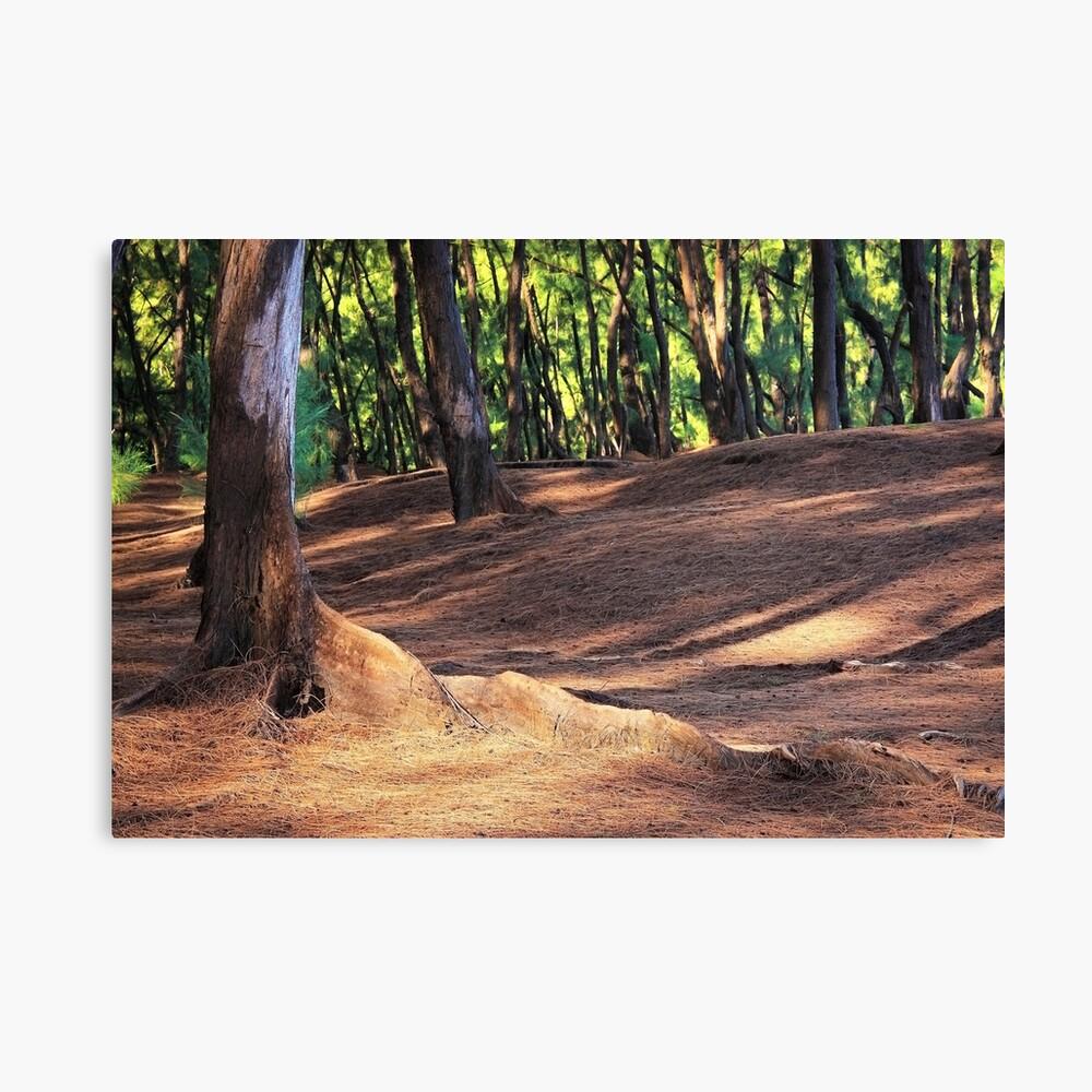 Kaloli Point 2 Canvas Print