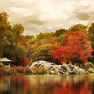 Hernshead in Autumn by Jessica Jenney