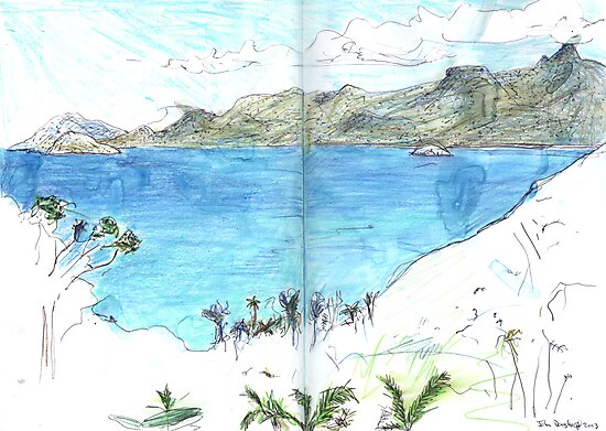 View Over Anse Soleil by John Douglas