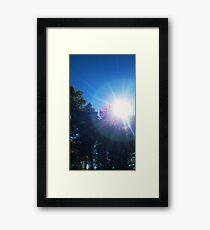 Vitamin D Framed Print