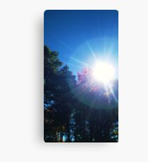 Vitamin D Canvas Print