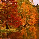 Reflections of Autumn by Lisa G. Putman
