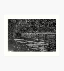 RIVERBANK Art Print