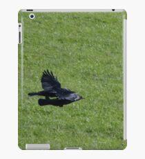 Jackdaw Squadron iPad Case/Skin