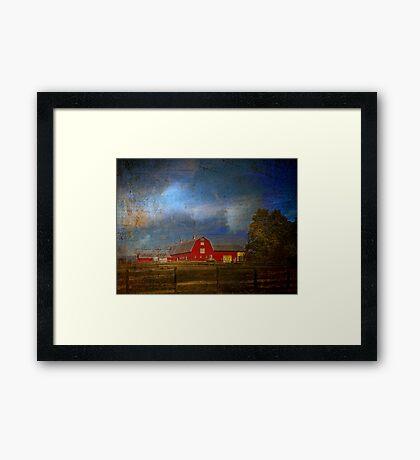 Wonder of the Barn Framed Print