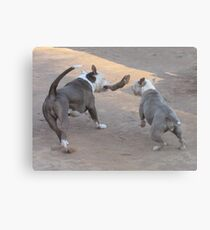 Goin' For It! Canvas Print