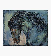 Friesian Stallion Photographic Print