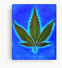 Hemp Lumen #1 Canvas Print